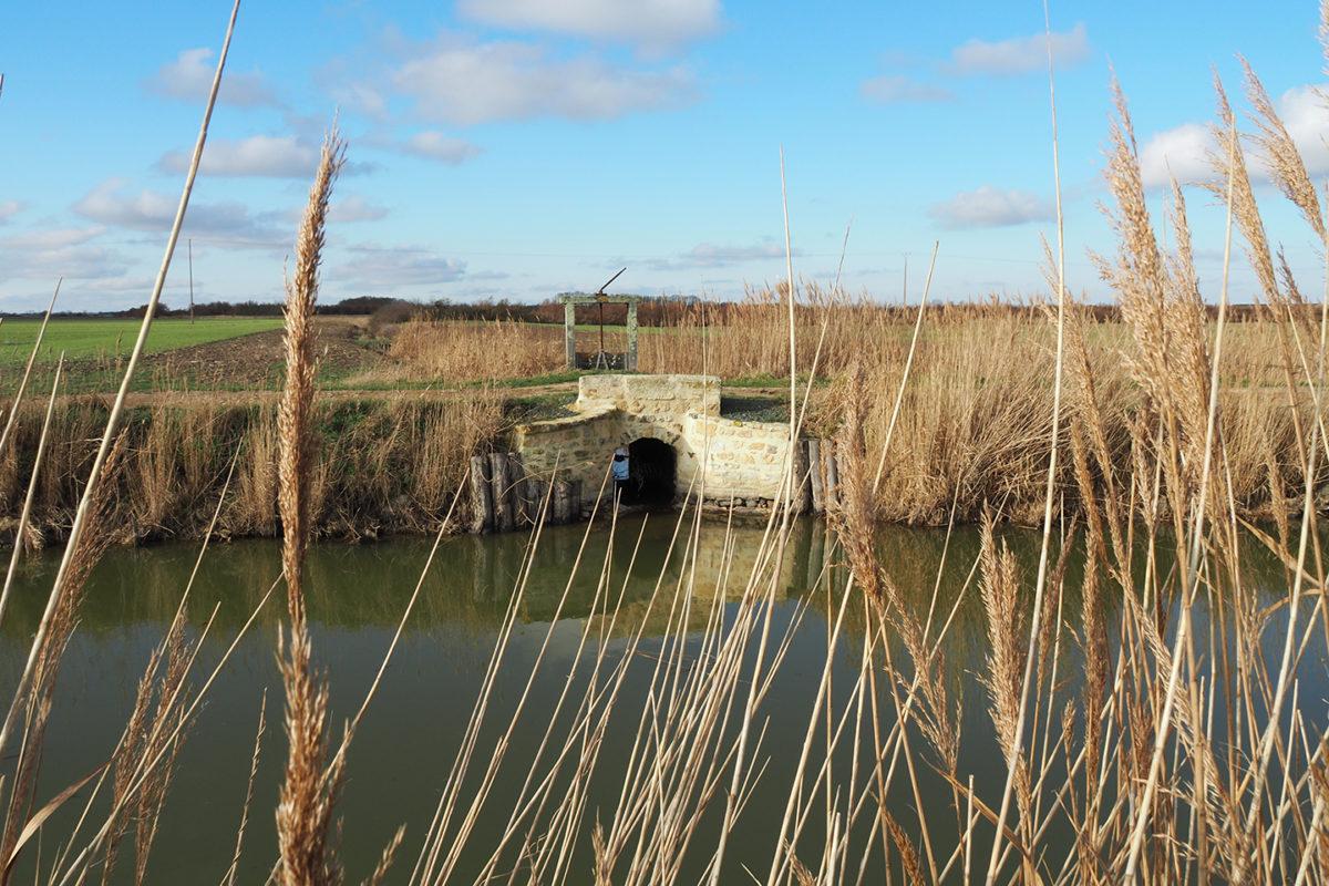 Ouvrages-hydrauliques : portereau à Champagné-les-Marais